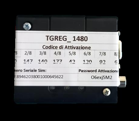 REG-GSM